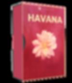 Havana - latin and moombahton serum presets