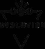 5 evolutions.png