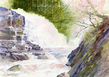 C44. Tollymore Falls.