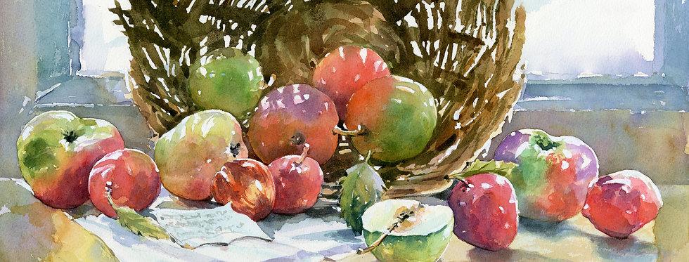 C63. Light Fruit.