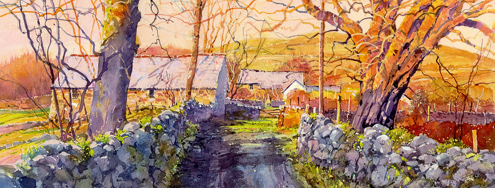 C78. Evening Light on Mourne Barn.