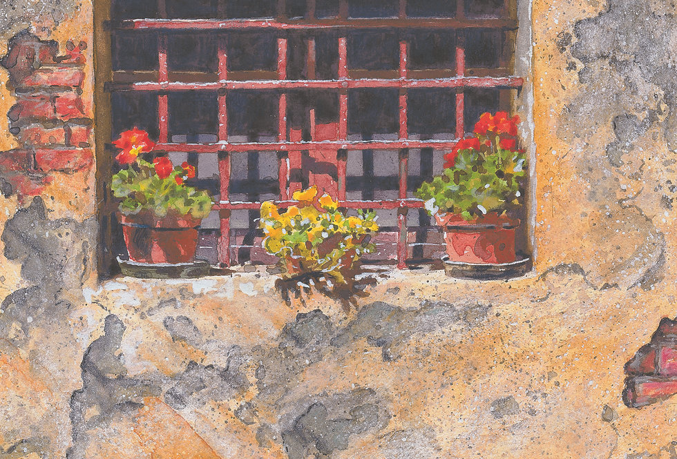 B20. Barred Window with Geraniums.