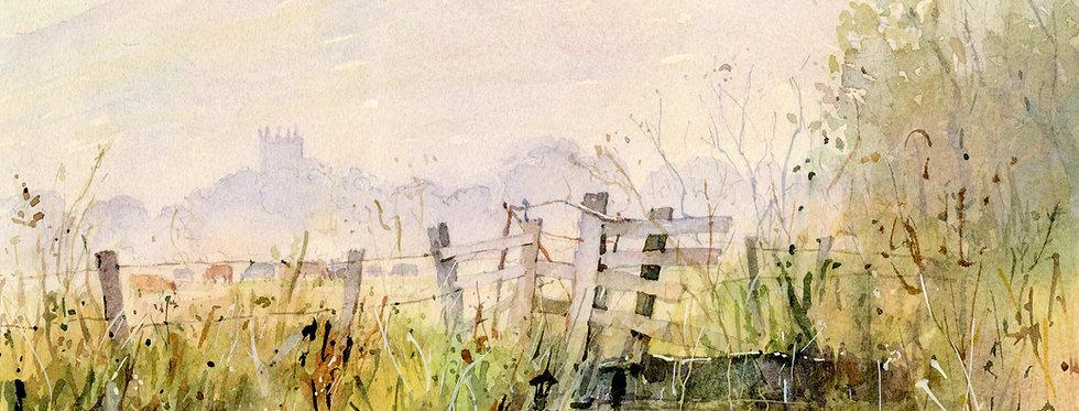 C22. Morning Light, Bryansford.
