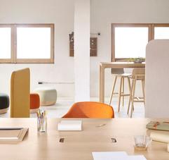 7903_Alki-Office-Design-Iratzoki-Lizaso-