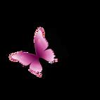 kisspng-butterfly-petal-computer-wallpap