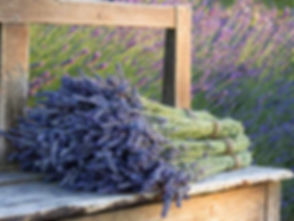 natural_lavender_products_tuscany.jpg