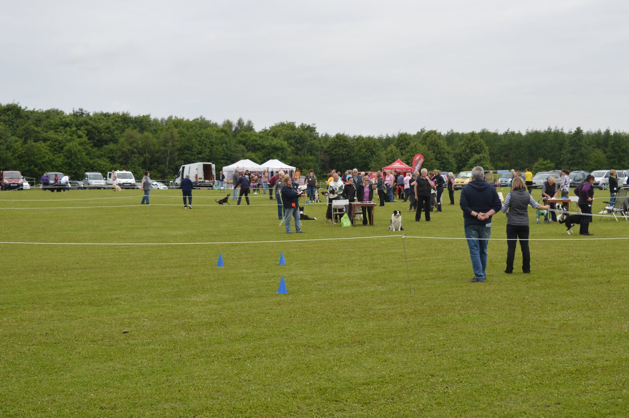 Chalfield DTC Open Show 2016