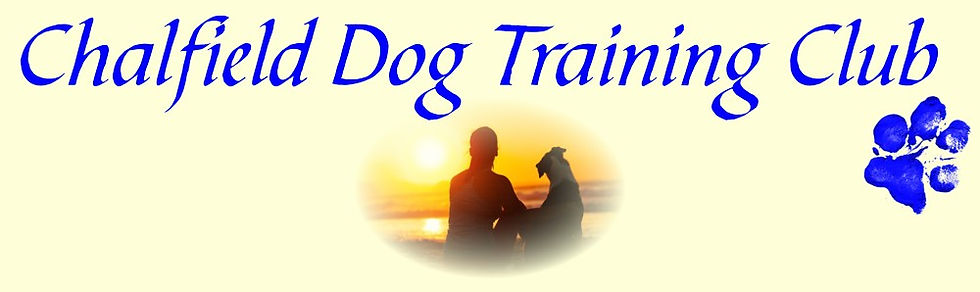 chalfield dog training in nottingham puppy courses