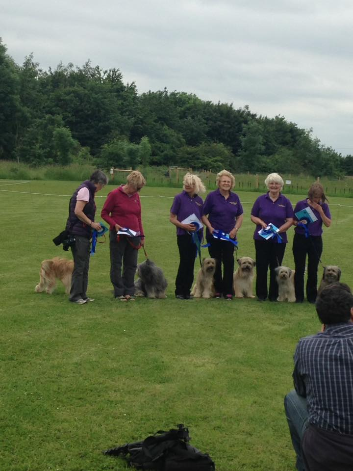 Obreedience Team pyrenean sheepdog