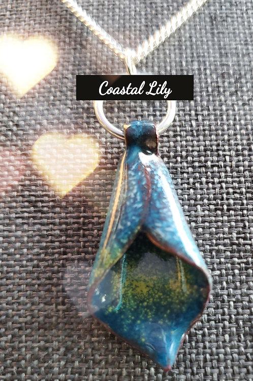 Coastal Lilly