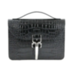 Marcellino NY, made in USA, women's mini brief, ALEIA mini brief, crossbody bag, leather bag