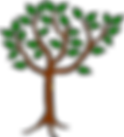 tree-brown trunk & leaves.png