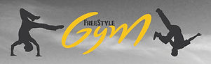 1504690534-1464344244-MEA freestyle gym.