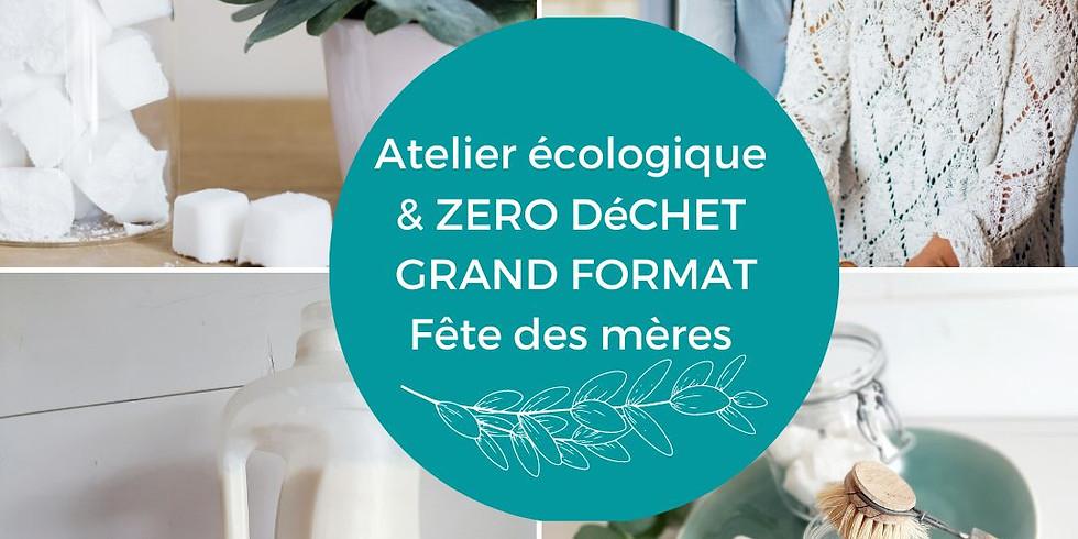 Atelier écologique grand format : Lessives, adoucissants + tawashi/pastilles lave-vaisselle /cake vaisselle  (1)