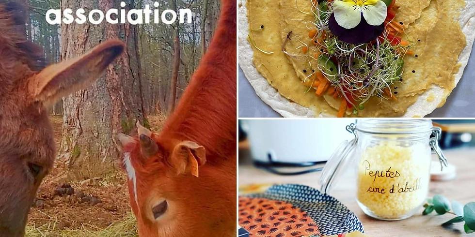 Atelier découverte spécial Pique-nique Zéro déchet avec fabrication de BEEWRAP et visite de la ferme pour les enf... (1)