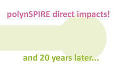 _polyn_3-Impact.jpg