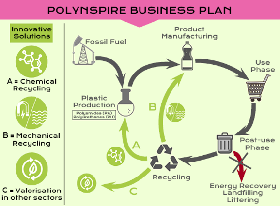 Polynspire infographics business plan 2.