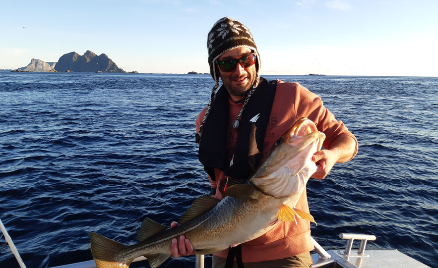 Beautiful summer cod
