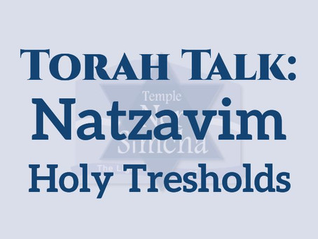 Natzavim -  Holy Thresholds