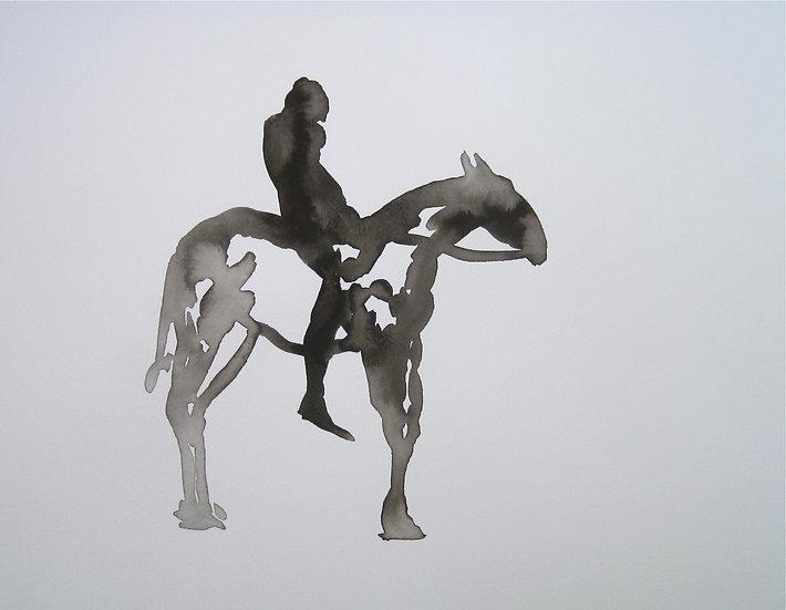 Frank Jan v. d. Laan, RUITER 28, 2013, 30 x 40 cm.