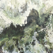 Moss 2x1.3m.jpg
