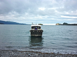 water taxi to Halibut Cove
