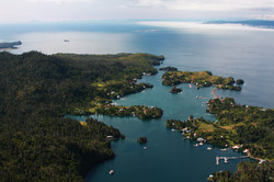 aerial view of Halibut Cove