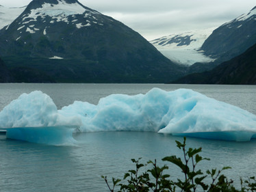 Iceberg floating in glacial lake by Grewingk Glacier, only a 30 minute kayak away from Halibut Cove Cliffside Cottages