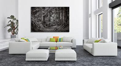 fairytale forest wall.jpg