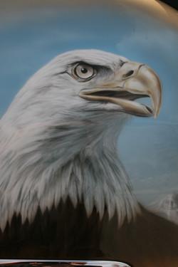 AN EAGLE 1