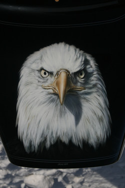 JUST AN EAGLE 1