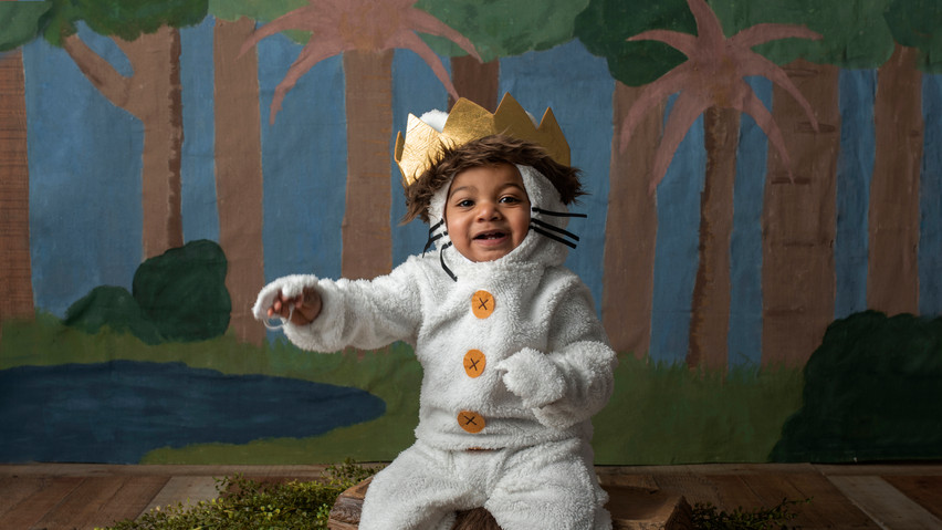 where the wild things are birthday