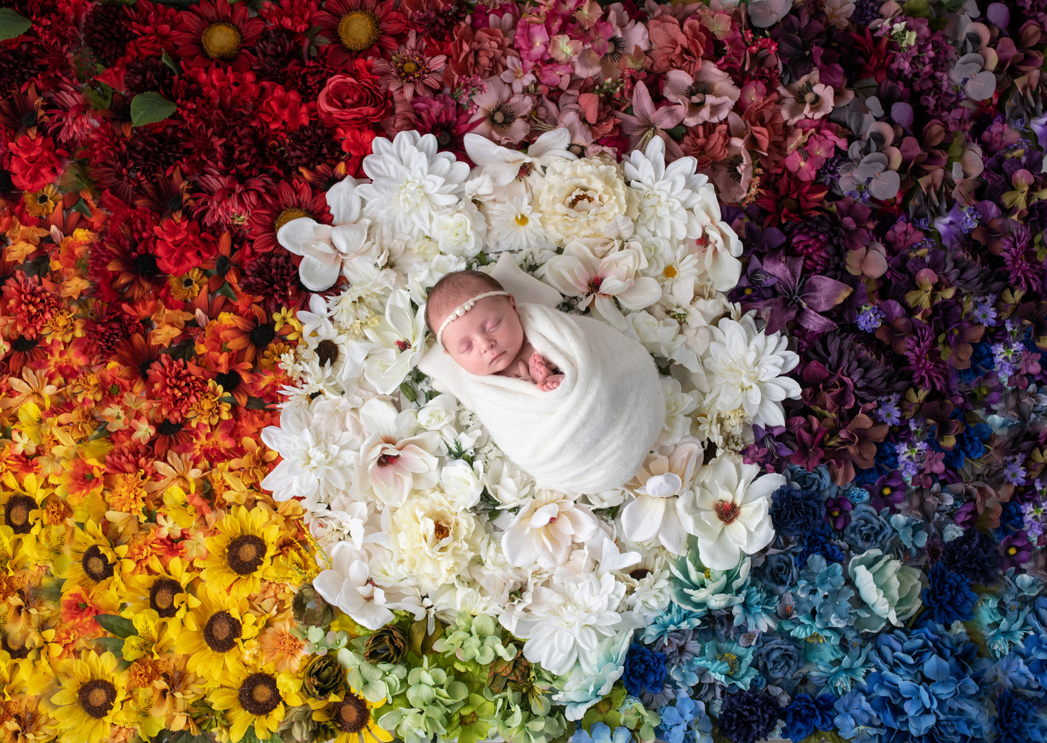 newborn baby rainbow flowers