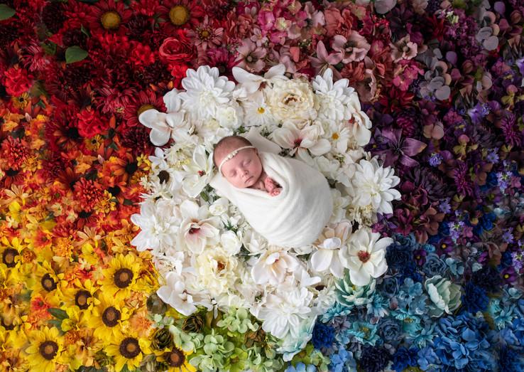 newborn baby rainbow flowers