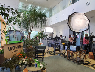 WELEDA&STYLER 온라인 프로모션