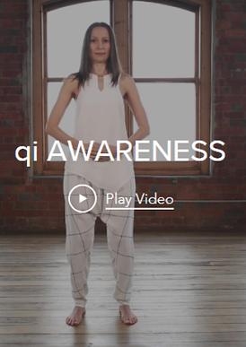 QiAwareness.png