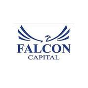 Falcon Capital Private Equity.jpg