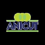 Anicut | PSI Funding Network