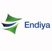 Endiya PSI VC PE Funding Network