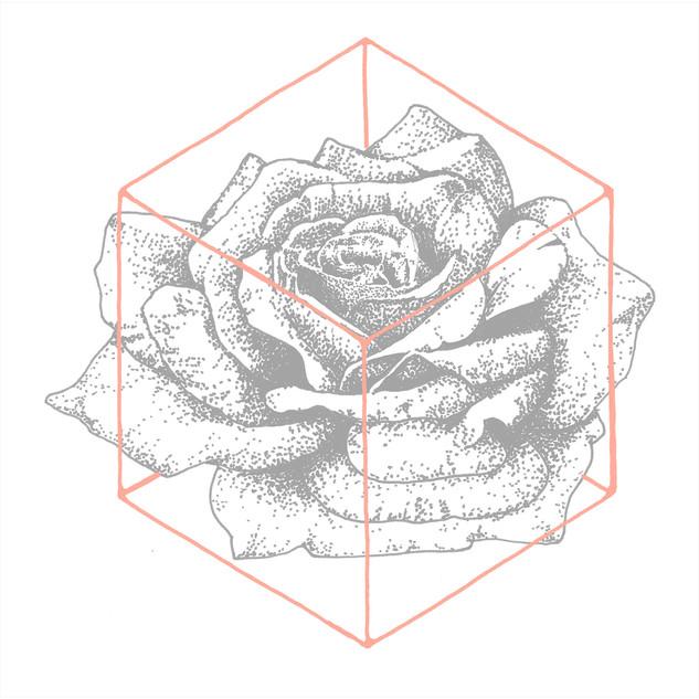 rachel-rivera_life-clothing_sacred-flora