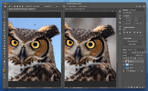 Introduction to Photoshop Photo Editing with Nicole Mordecai
