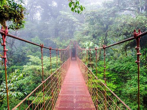 5 Nights All Inclusive Costa Rica