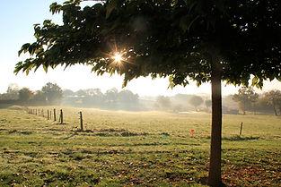 lever-de-soleil-sur-jardin-metairie-du-b