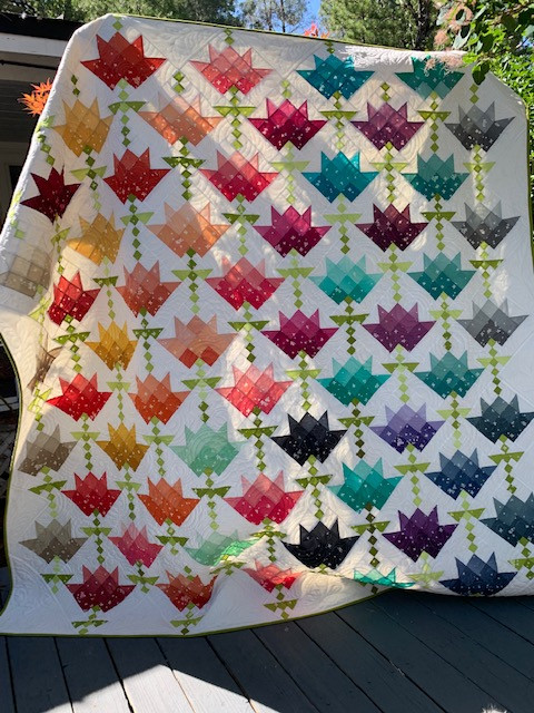 2021 Opportunity Quilt - Blooming Rainbow