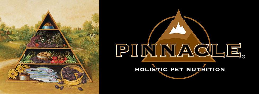 PINNACLE-バナー202004.jpg