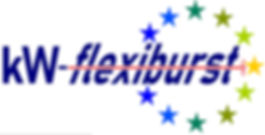 flexipurst logo FINAL cropped.jpeg