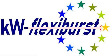 flexipurst logo FINAL cropped.jpeg