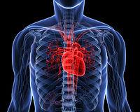 cardiac_1.jpg