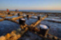 wander-malta-day-trip 32.jpg