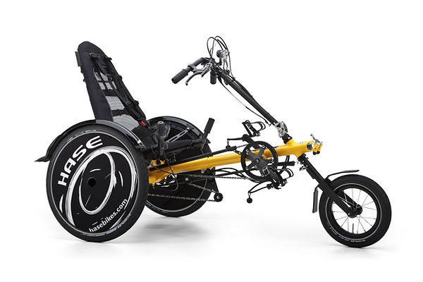 Trets Children's Recumbent for Special Needs by Hase